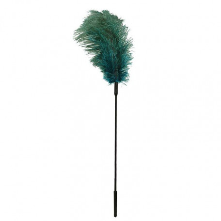 PLUME TURQUOISE